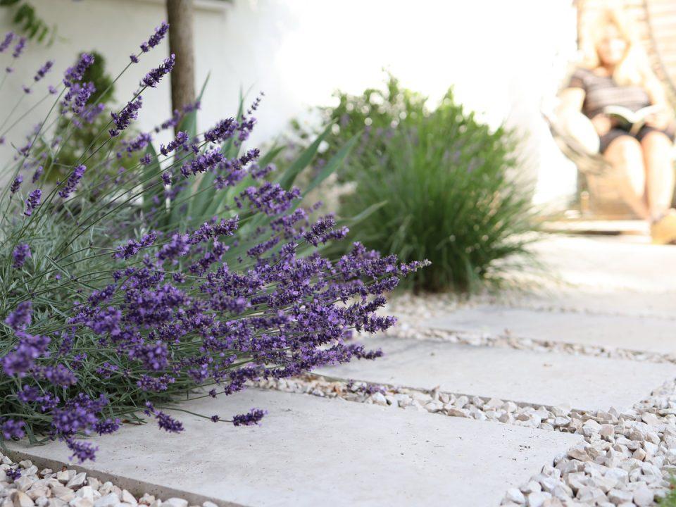 Gartenwelt Mediterraner Garten: Wege mit Travertinplatten