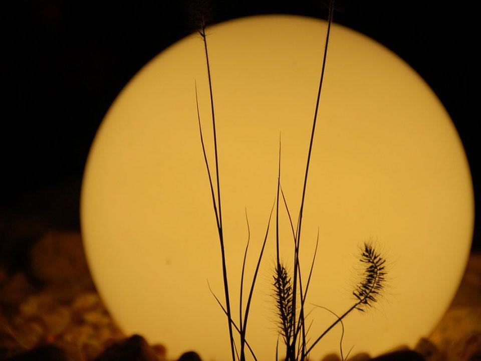 Außenbeleuchtung in mediterranem Garten