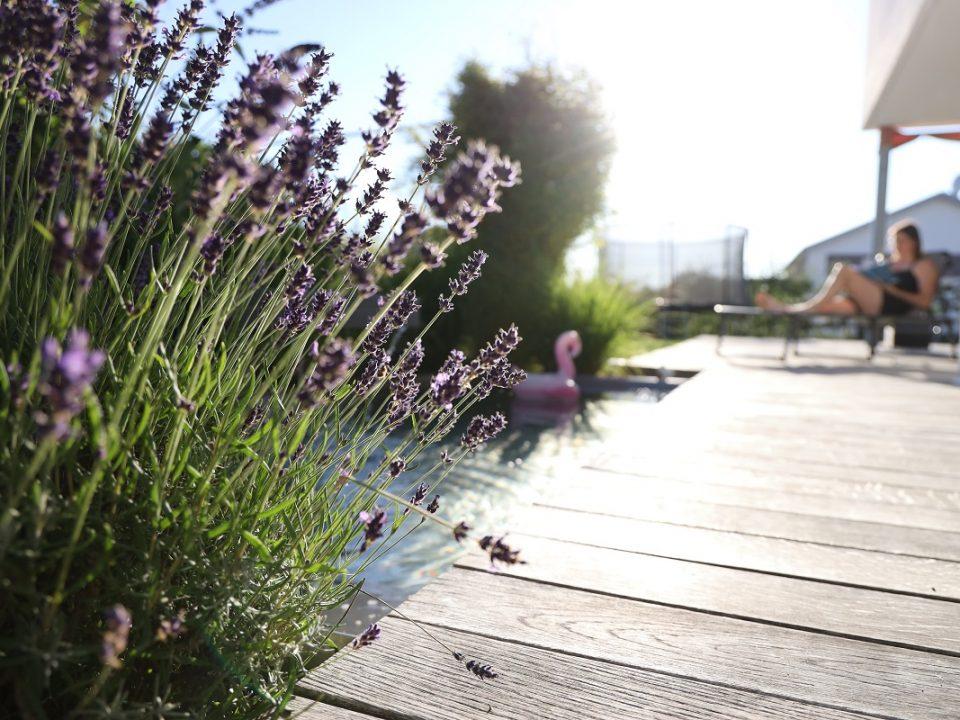 Designgarten | Holzterrasse